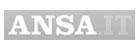 ansa-it-logo