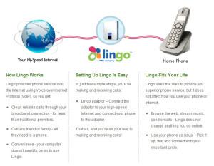 lingo_dettagli